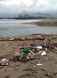 Trash accumulating on a beach in Santa Monica. Urban runoff, including plastics, heavy metals, and toxic chemicals, end up on our beaches and in our oceans, and cost California millions of dollars annually.