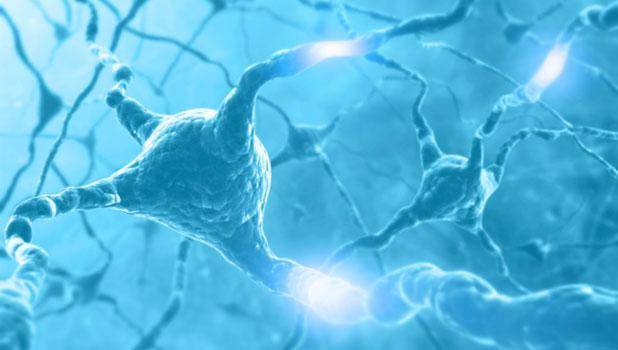 sciencecafescienceofconsciousness618x350
