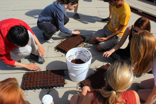 College students spend their spring break learning about--and growing their own--sustainable food