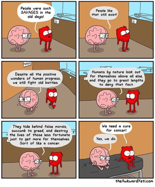 heart and brain.jpg
