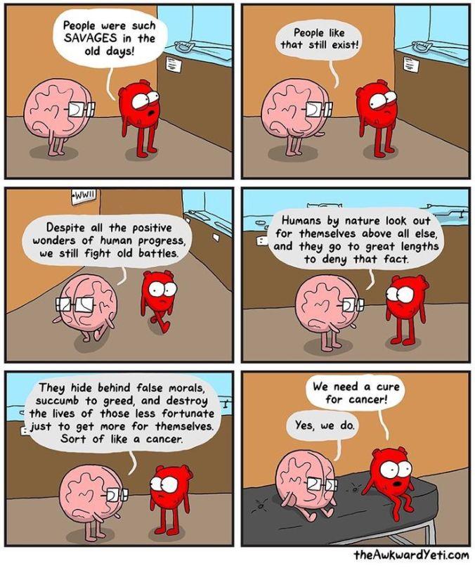 heart and brain.jpg
